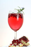 bebida fresca do verão do cocktail do prosecco da romã Foto de Stock Royalty Free