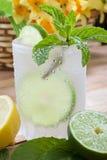 Bebida fria Fotos de Stock Royalty Free