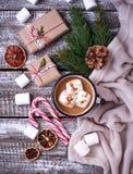 Bebida hecha en casa del chocolate caliente o del cacao Fotos de archivo