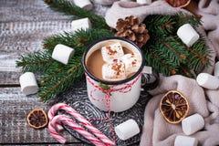 Bebida hecha en casa del chocolate caliente o del cacao Imagen de archivo