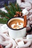 Bebida hecha en casa del chocolate caliente o del cacao Imágenes de archivo libres de regalías