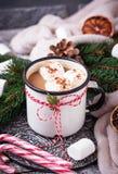 Bebida hecha en casa del chocolate caliente o del cacao Fotografía de archivo libre de regalías