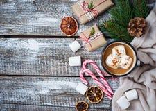 Bebida hecha en casa del chocolate caliente o del cacao Fotos de archivo libres de regalías
