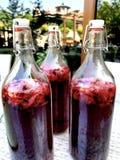 Bebida hecha a mano Imagen de archivo libre de regalías