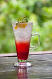 Bebida italiana da soda Fotos de Stock Royalty Free