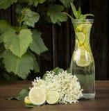Bebida mais velha Fotos de Stock Royalty Free