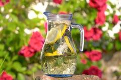 Bebida muito boa Imagem de Stock