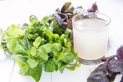 Bebida não alcoólica do citrino fresco Fotografia de Stock Royalty Free