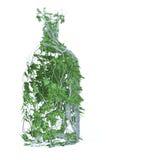 Bebida pura da mola Foto de Stock