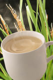 Bebida quente do cereal Imagem de Stock
