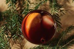 Bebida quente do vinho Vinho morno do Natal Vinho ferventado com especiarias com as laranjas Fotografia de Stock Royalty Free