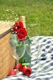 Bebida romántica de la comida campestre Imagen de archivo