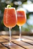 Bebida saudável Fotografia de Stock Royalty Free