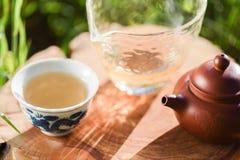 Bebida saudável Chá verde no bule e em uns copos chineses da argila em w Fotos de Stock Royalty Free