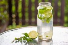Bebida simples de refrescamento do açúcar livre fotos de stock royalty free