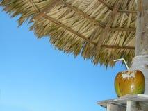 Bebida tropical Fotografía de archivo libre de regalías