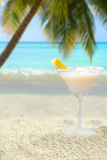 Bebida tropical Imagens de Stock