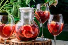 Bebida vermelha de refrescamento com gelo e fatias de limão no fundo das folhas verdes Fotografia de Stock Royalty Free