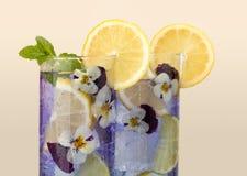 Bebida violeta con las flores comestibles Imágenes de archivo libres de regalías