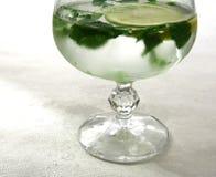 Bebida y sombra frías Imagenes de archivo