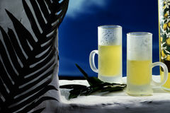 Bebidas alcohólicas Imágenes de archivo libres de regalías