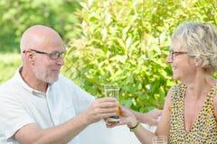 Bebidas de mediana edad de los pares Imagen de archivo libre de regalías