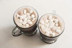 Bebidas del chocolate caliente Fotografía de archivo libre de regalías