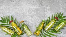 Bebidas del Detox, hojas de palma, Mojito, romero, verano, sano imágenes de archivo libres de regalías