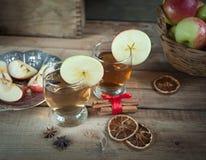 Bebidas del otoño con las especias Fotografía de archivo libre de regalías