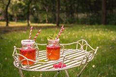 Bebidas del verano Foto de archivo libre de regalías