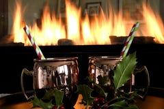 Bebidas do feriado Imagem de Stock