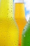 Bebidas do frio Imagens de Stock