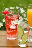 Bebidas do verão Imagem de Stock