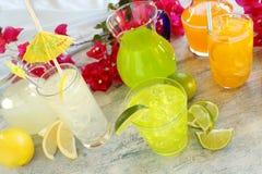 Bebidas do verão Imagem de Stock Royalty Free