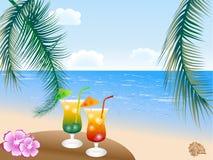Bebidas do verão Imagens de Stock Royalty Free