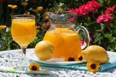 Bebidas en el jardín Foto de archivo