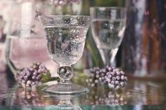 Bebidas en jardín Imágenes de archivo libres de regalías