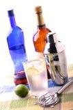 Bebidas espirituosas fotos de archivo libres de regalías