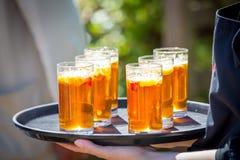 Bebidas frescas de restauración del verano Fotografía de archivo libre de regalías