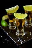 Bebidas fuertes del alcohol Tiros del Tequila con las rebanadas de la sal y de la cal fotografía de archivo