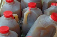 Bebidas gelados em uns meios recipientes do galão Imagens de Stock Royalty Free