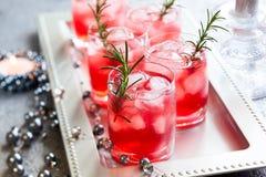 Bebidas para la Navidad Fotos de archivo