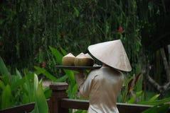 Bebidas tropicales, Vietnam Imágenes de archivo libres de regalías