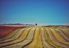 Bebouwd land Stock Afbeeldingen