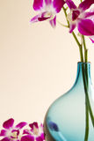 Bebouwde blauwe vaas met roze orchideeën Stock Foto's
