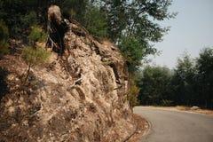 Bebouwde de bergweg van Gerêsportugal royalty-vrije stock fotografie