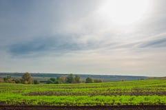 bebouwing de voorbereiding van land voor het kweken van gewassen Groene strook stock fotografie