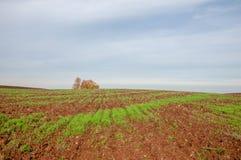 bebouwing de voorbereiding van land voor het kweken van gewassen Groene strook stock foto