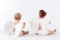 Bebês do anjo Foto de Stock