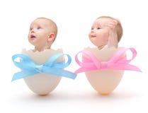 Bebês nos ovos Fotografia de Stock Royalty Free